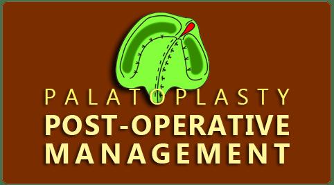 post op preparations Palatoplasty